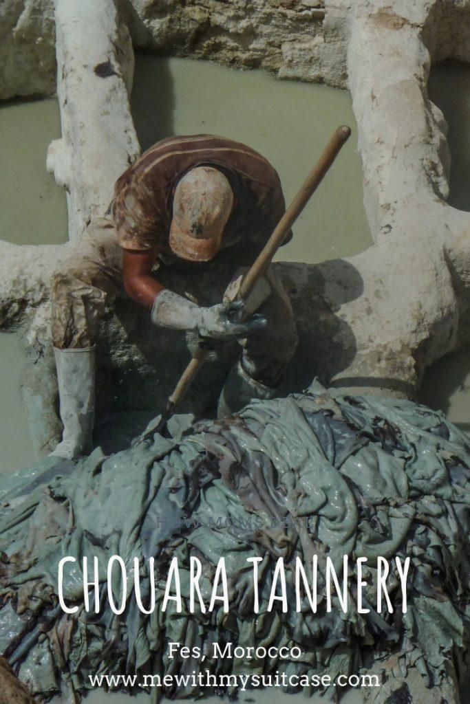 Chouara Tannery, Fes