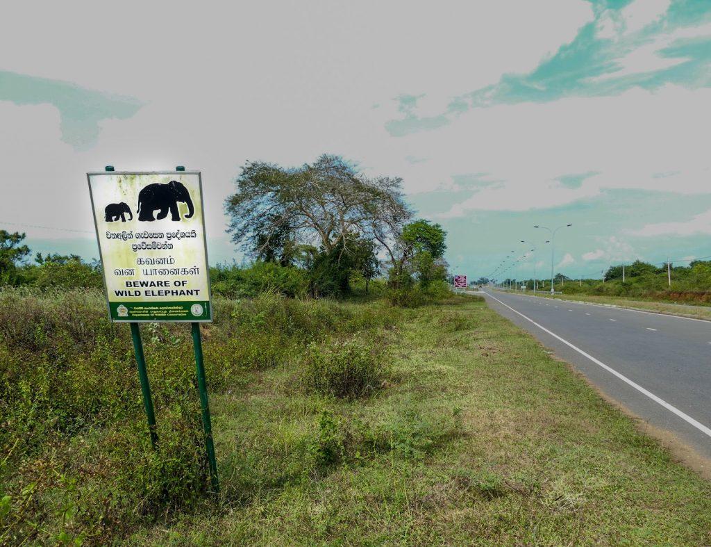 itinerary for Sri Lanka