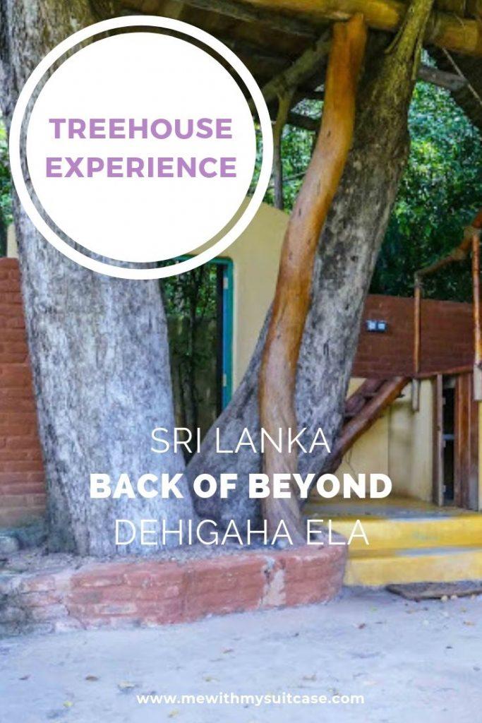 Best place to Stay in Sigiriya