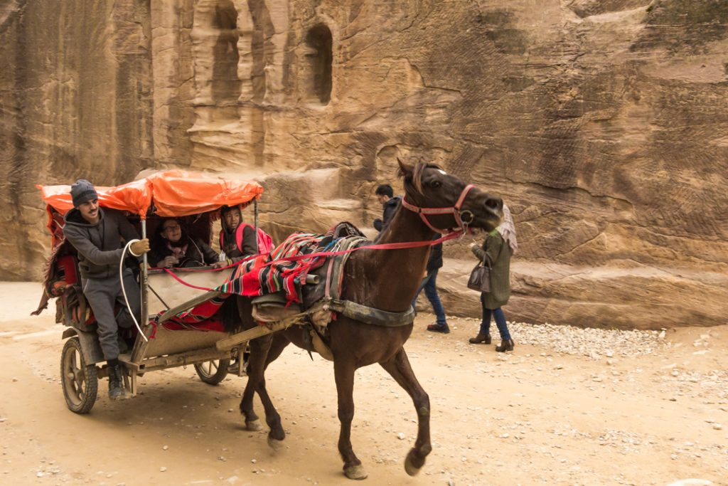 Horse cart in Petra
