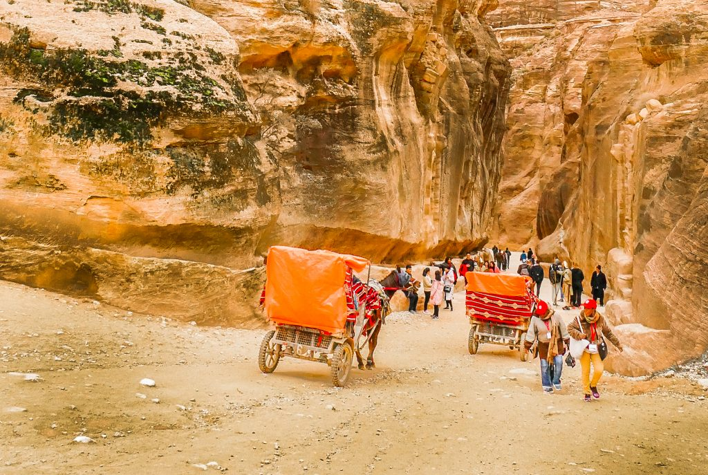 Donkey cart in Petra
