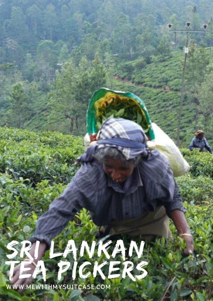 Buy Sri Lankan Tea