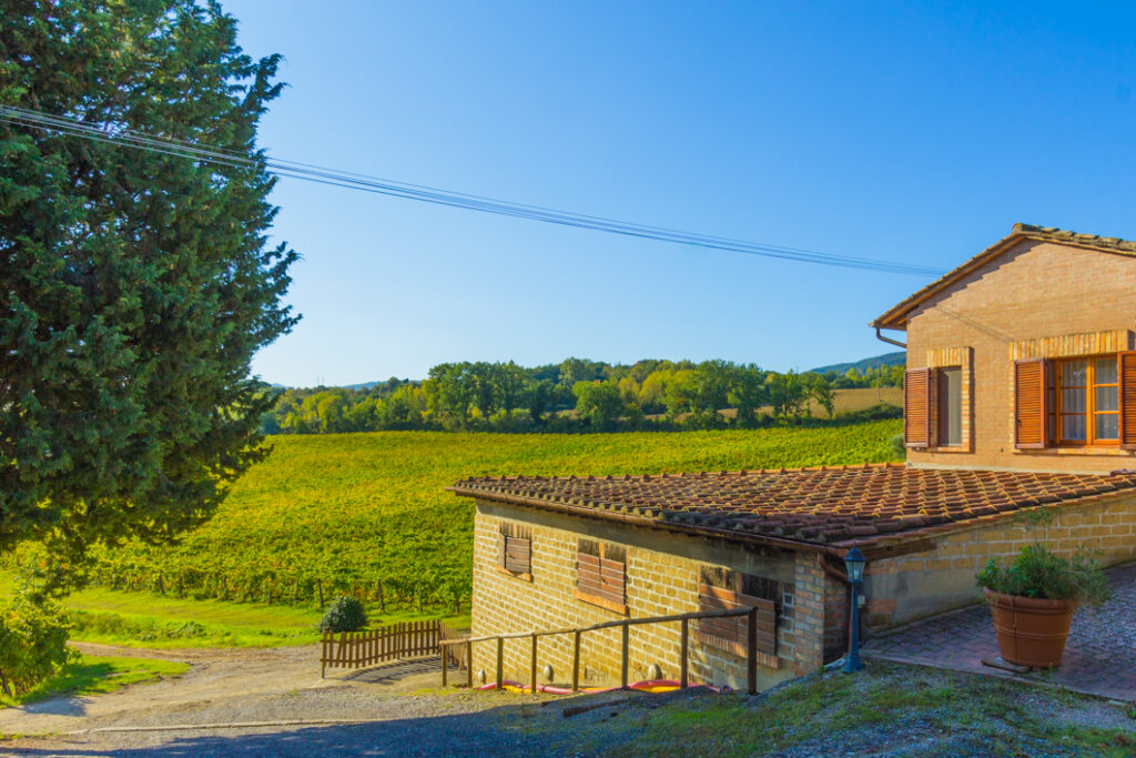 Food and Wine tour in Tuscany